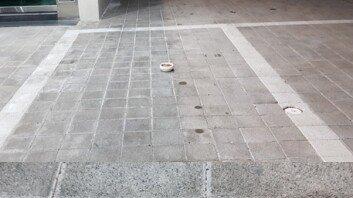 주차된 차량 빼자 고양이 사료가…캣맘 행동에 '분노'