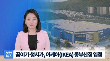 """""""느그는 쉬라"""" """"꿈이가 생시가""""…부산사투리 뉴스 '붓싼뉴스' 인기"""