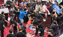 """用洋铁桶倾倒猪内脏,甚至动拳头……台湾议会因""""进口猪""""发生混战事件"""
