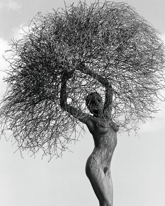 마돈나를 춤추게 한 남자 허브 릿츠 사진전
