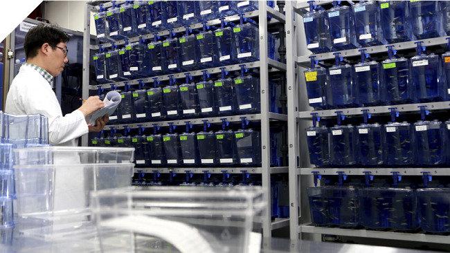 신약 개발 효율 극대화 바이오메디칼 연구솔루션 기업