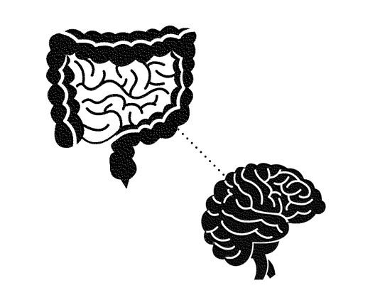 腸은 '제2의 뇌'… 나쁜 기억도 기억한다