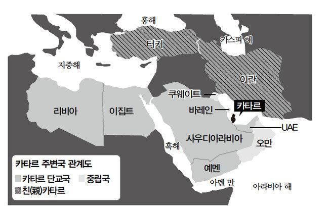 트럼프가 불 지른 30대 사막 왕자들의 자존심 대결