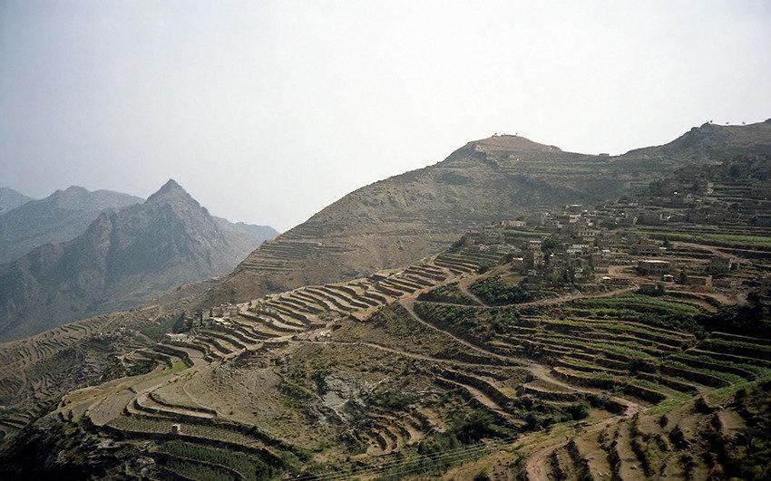 커피 시원지는 예멘 아닌 에티오피아