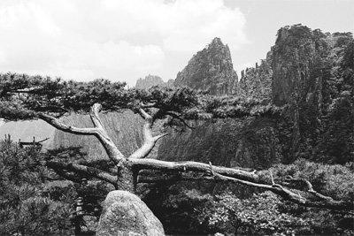 '天然圖畵' 72峰의 절대 미학