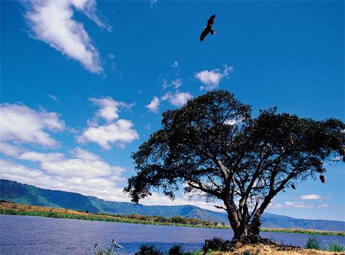 탄자니아 응고롱고로 자연보호구역