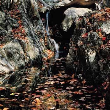 고요 속 사색, 만산홍엽의 활력 가을 山, 山, 山