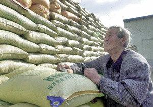 발등의 불, 쌀 시장 개방 협상