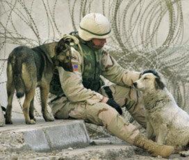 인간인가, 살인도구인가…병사들이 겪는 전쟁심리학
