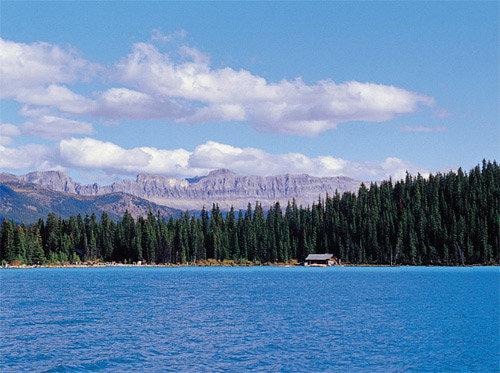 '회색곰 와프'의 고향 캐나디언 로키