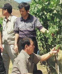 한-칠레 FTA 6개월, 불안한 農心
