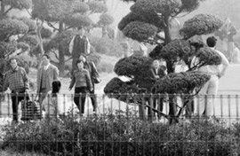 국가인권위 '탈북자 실태 중국 현지조사' 기밀보고서