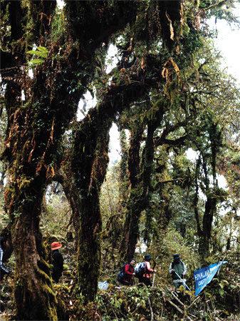 안나푸르나 트레킹, 원시자연의 빛과 그림자 따라 걷다