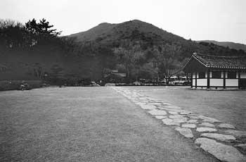 5대째 화가 배출한 한국최고의 예맥(藝脈)