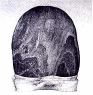 작은 돌에서 찾는 삼라만상의 아름다움