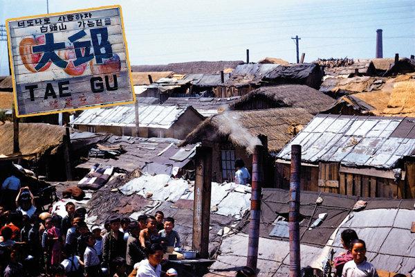1954년 大邱로의 시간여행