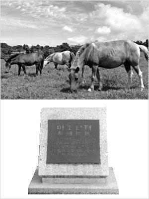 우리 문화와 말(馬)
