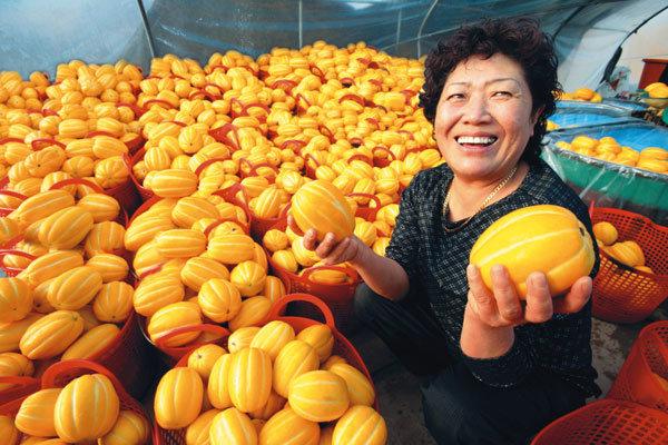 과일의 계절파괴는 무죄!