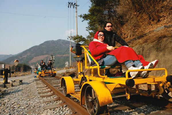 자연 속 테마 열차