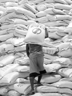 다국적 자본·민족주의 준동하는 국제 식량시장