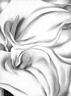 20세기 미국 현대미술의 독보적 여성화가 조지아 오키프