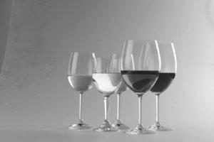와인? 어렵지 않다!