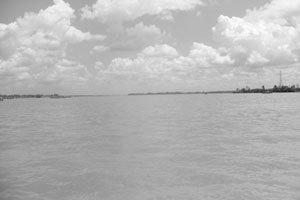 기후변화로 생존 위협받는 메콩 삼각주 구하기 작전