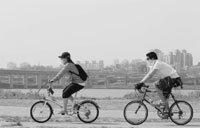 자전거 운전자가 진로를 변경할 때의 주의 의무 外