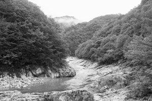 백담사에서 봉정암에 이르는 순례자의 숲길