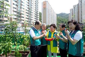 주말 근교농장 찾던 '도시 농민'들 옥상·베란다 활용한 텃밭으로 이동