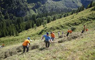 세계 2위 재보험사 '스위스리'