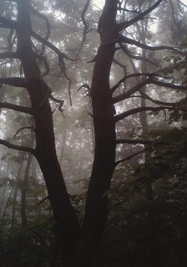 영화 속 동막골처럼 격리된 곳 강원 홍천 물걸리