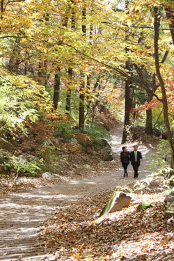 아내와 함께하는 주말 걷기