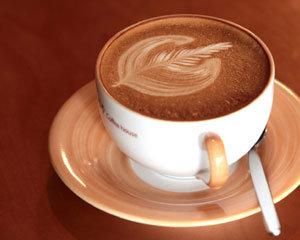 高카페인? 대부분은 低카페인! 커피보다 함량 적어 적정량은 藥