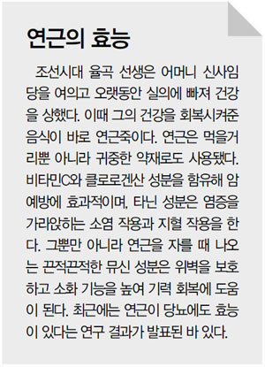 유방암 이겨낸 '항암뿌리' 연근 '뼈 튼튼 씨앗'  아마란스