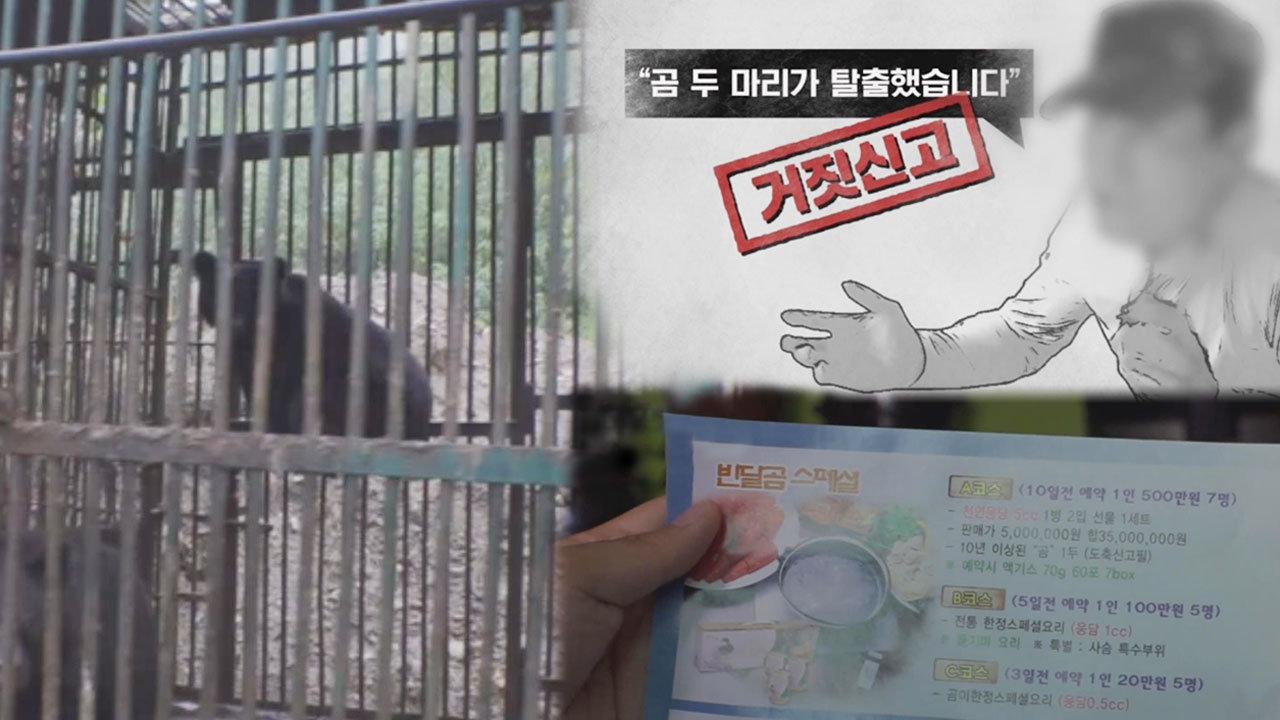 의문의 용인 '곰 탈출 사건'의 전말!