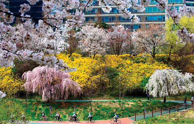 봄을 마중하다