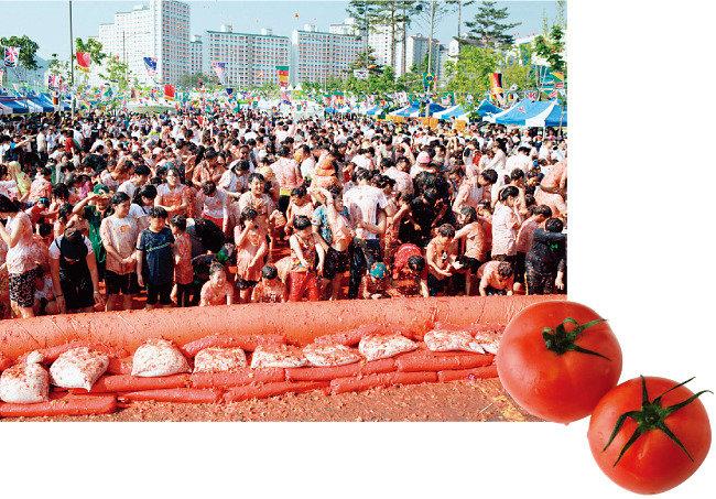 달성 토마토축제, 청도 반시축제 대박!  세계 최초 '토마토와인' '감와인' 떴다
