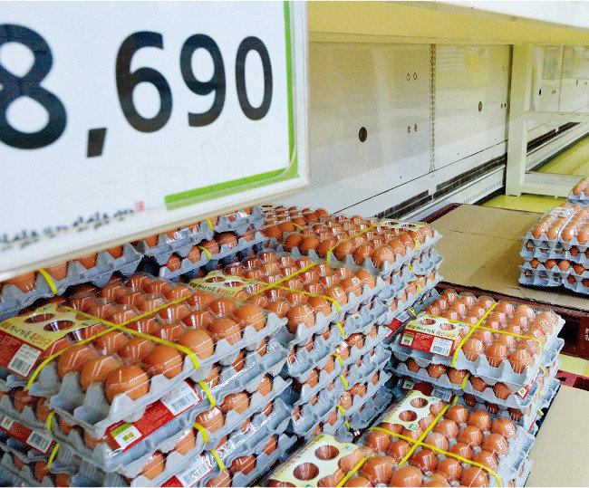유통업계 vs 양계업계 달걀대란 책임 떠넘기기