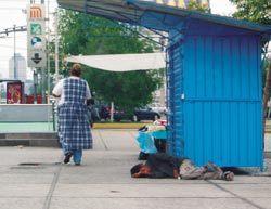 남미의 버림받은 동심들 '거리로'