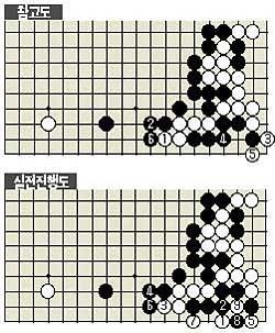 한국바둑 자존심 살린 백8 묘수