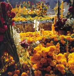 멕시코 명절 '빛 바랜 전통'