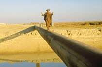 테러 전쟁은 석유 전쟁?