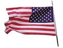 美 강요된 충성, 빛바랜 애국주의
