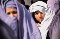 외국인 여성도 '운전 금지'… 탈레반 정권 또 구설수 外