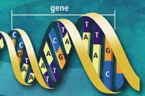게놈 프로젝트, 축복인가 재앙인가