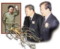 """DJ·이건희 회장 """"북한 산삼 심봤다"""""""