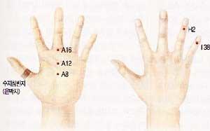 손은 인체의 축소판 … 봉으로 혈 자극 땐 피로회복·소화력 증진