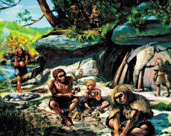 700만년 전 두개골, 인간? 원숭이?