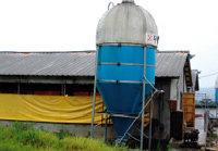 黃우석은 돼지 농장으로 간다